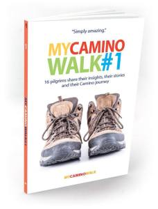 My Camino Walk